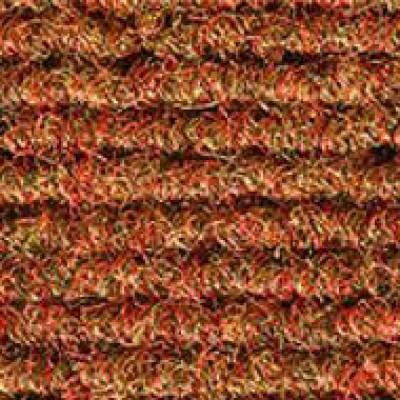 11838 haileybury autumn