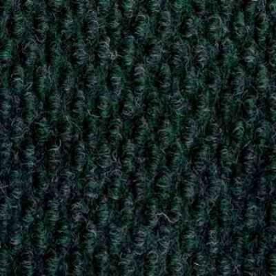 1342 fern 350x350