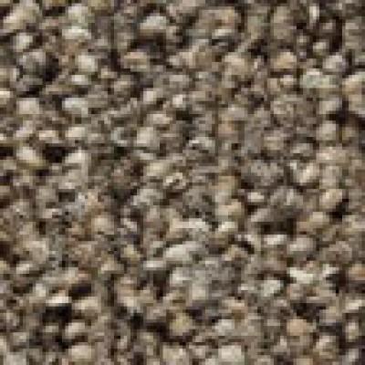 Lafite connect gradus carpet tile lc1 beige wjd flooring - Klean strip adhesive remover lowes ...