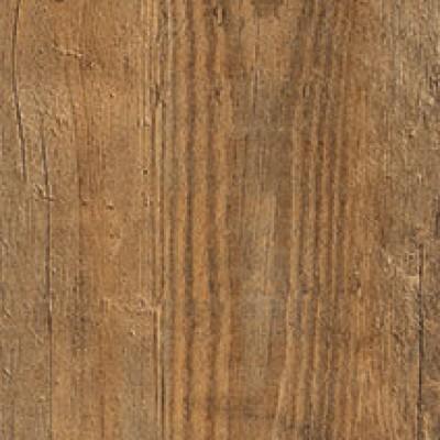 2249 wild amber oak