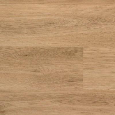 3385 american oak 1