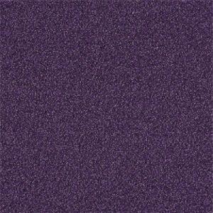 4174012 grape