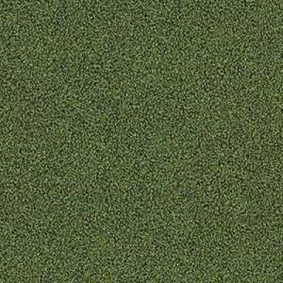 4175016 moss