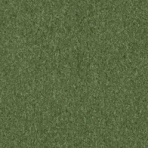 5158 kiwi