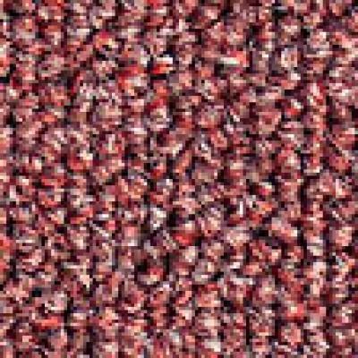 Lafite gradus carpet tile belfort 6806 wjd flooring - Klean strip adhesive remover lowes ...