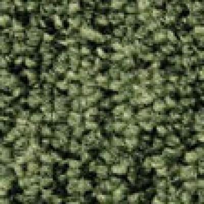 Lafite connect gradus carpet tile lc5 green wjd flooring - Klean strip adhesive remover lowes ...