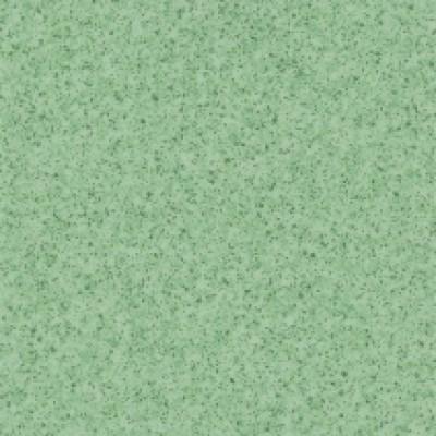 6785 eucalyptus 1