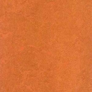 african desert 3825 1