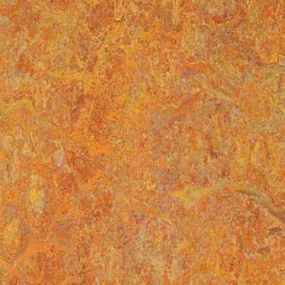 asian tiger 3403 1