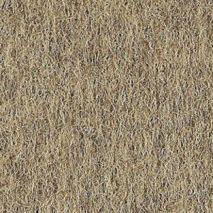 berber beige