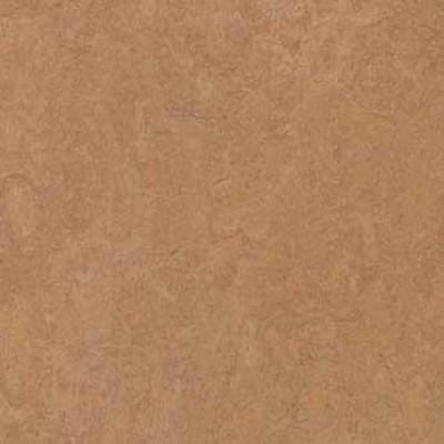 camel 3876 1