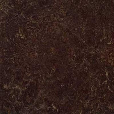 dark bistre t3236 1