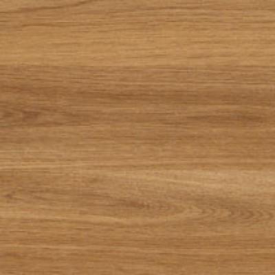 european oak 3342 1