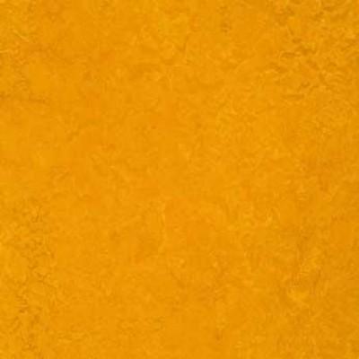 golden sunset t3125 1