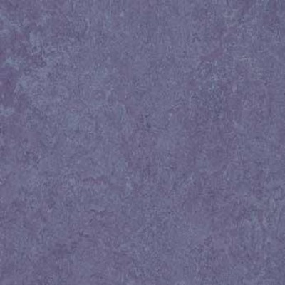 hyacinth t3221 1