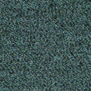 l24 6408 binary pine 1