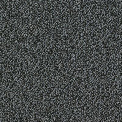 sand 9505
