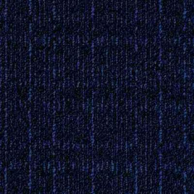 scape 8901