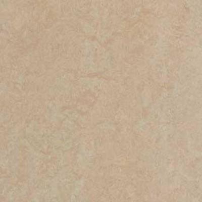 silver birch 3871 1