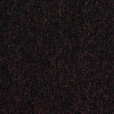 tempra 2081