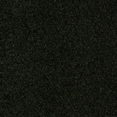 torso 20a147 209061